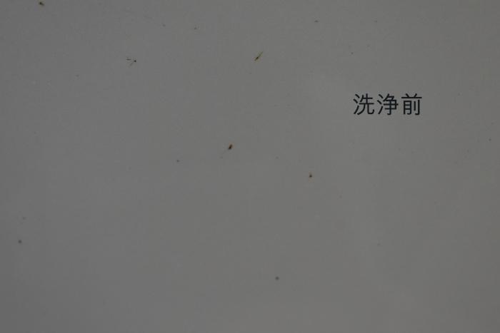 RX-細部洗浄前
